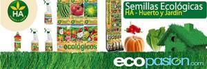 agricultura-huerto-eco