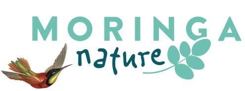 moringa-nature-almeria