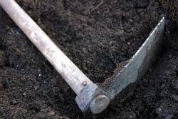 compost-abono