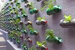 huerto-urbano-vertical