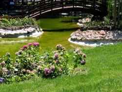 jardin-ecologico-diseno