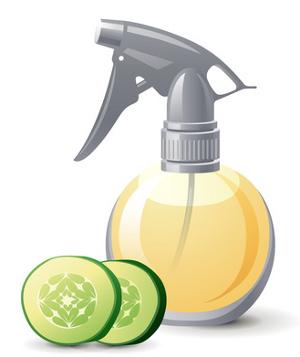 Productos de limpieza ecol gicos - Ambientadores naturales para la casa ...